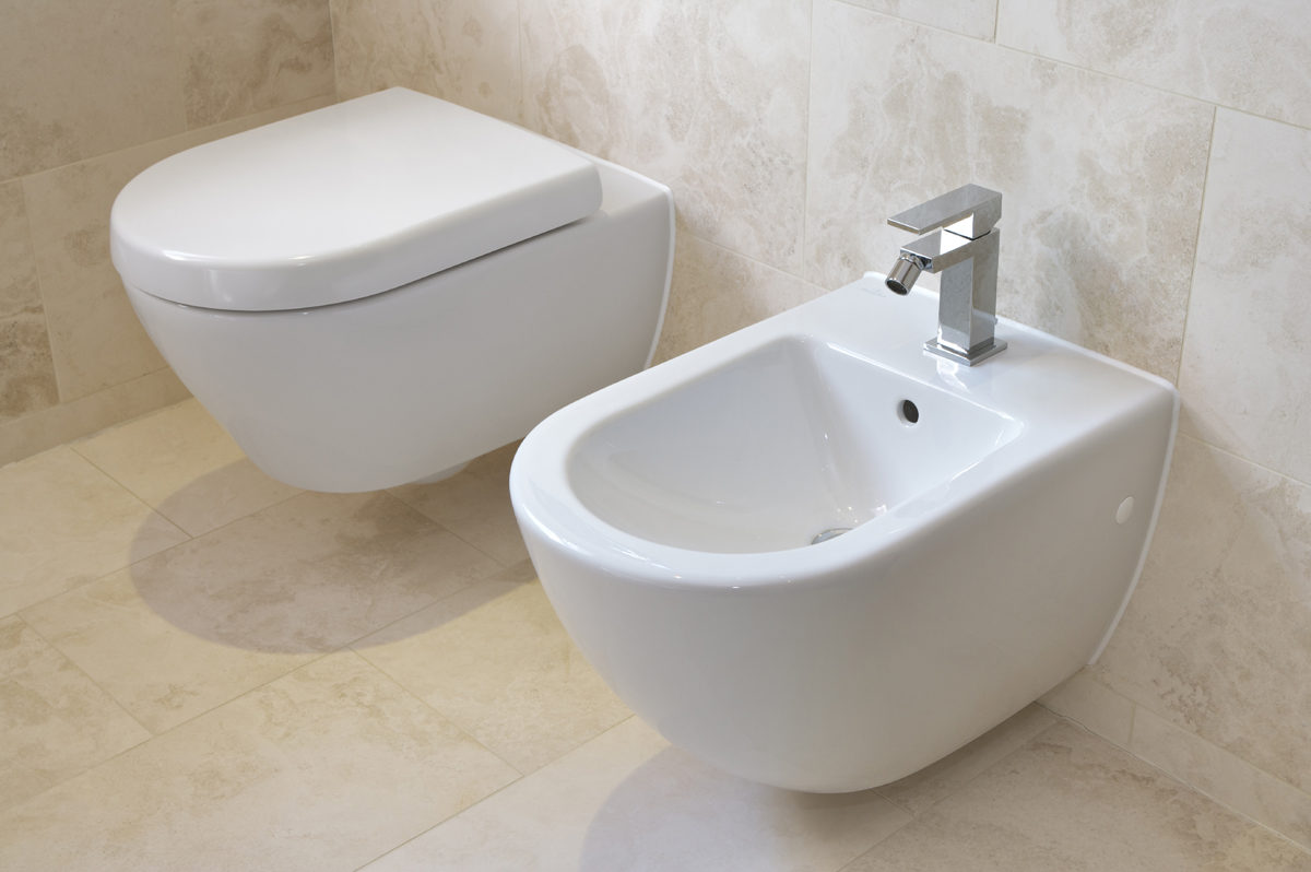 The Bidet, And Why You Want One
